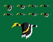 Animal Animation Sequence Hornbill Flying Cartoon Vector