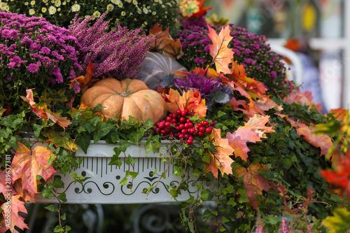 Photo sur Aluminium Fleur Pumpkins. Autumn Festival in the city. Moscow, September 2018