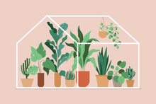 Vector Illustration In Flat Simple Style - Greenhouse With Plants