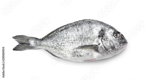 Obraz na plátně  Fresh dorado fish on white background