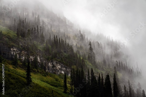 Canvas Print The clouds roll through the mountains on a rainy day in Glacier National Park, M
