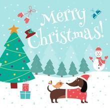 Christmas Card With Cute Dachs...