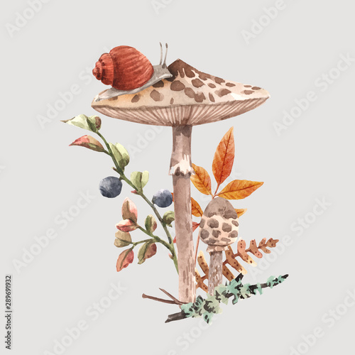 Fototapeta Watercolor forest mushroom vector composition