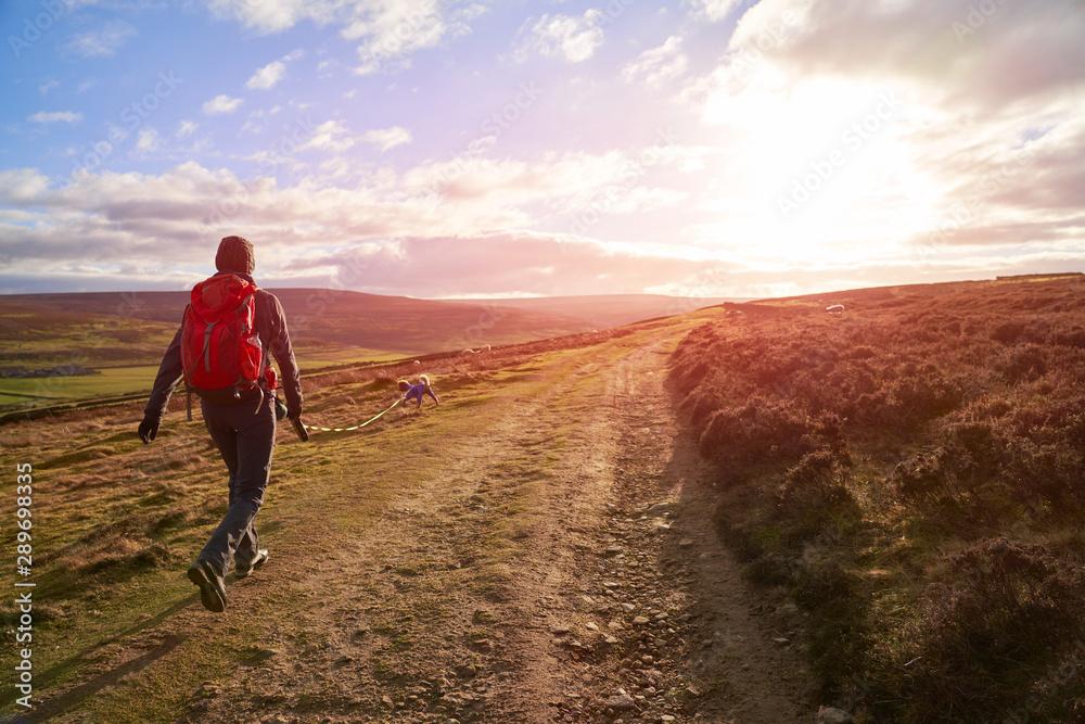 Fototapety, obrazy: Dog walk across the moors at sunset at Edmundbyers in County Durham.