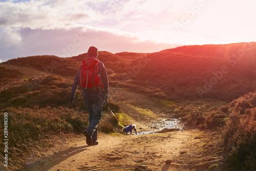 Fotografie, Obraz  A hiker and their dog walking along a dirt track across Edmundbyers moor and sunset
