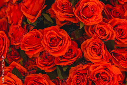 Bouquet roses flower background