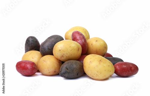 Obraz na plátně Pommes de terre jaunes, rouges et noires