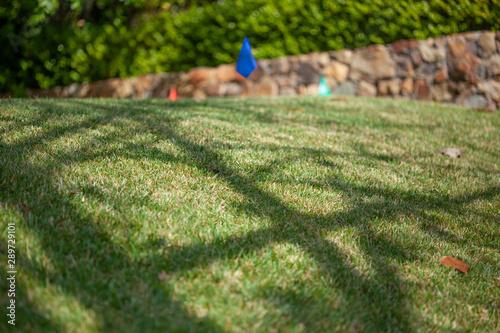 Fotografía  Sprinkler flags or markers for lawn aerator