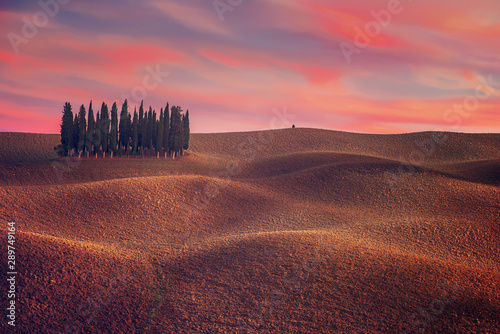 Foto auf AluDibond Dunkelbraun Tuscany landscape with cypress