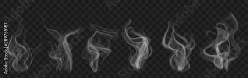 Set of realistic transparent smoke or steam in white and gray colors, for use on dark background Canvas Print