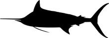 Blue Marlin Fish Silhouette Vector