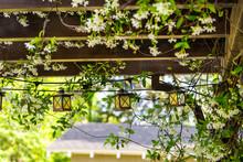 Patio Outdoor Spring White Flo...