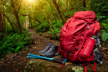 Red Backpack And Hiking Gear Set Placed On Rock In Rainforest Of Tasmania, Australia. Trekking And Camping Adventure.