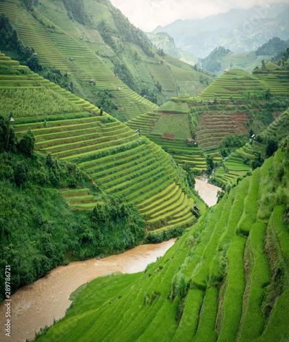 Foto auf Gartenposter Reisfelder YenBai Mu Cang Chai, landscape terraced rice field near Sapa, YenBai Mu Cang Chai in the rainy season north Vietnam
