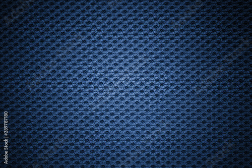 Fotomural  blue mesh texture background