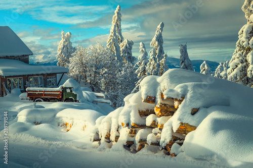 Fotografie, Obraz  Winter landscape with snow covered trees, car and house