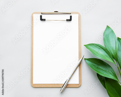 Fotografía  Clipboard and green leaves