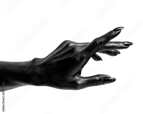 Fotografie, Obraz Black painted hands with long nails isolated on white background