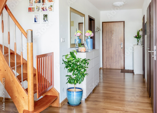Canvas home hallway with wooden floor, white furniture and mirror