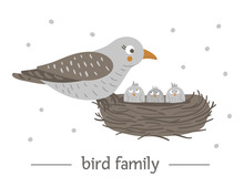 Vector Hand Drawn Flat Bird Sitting On The Nest With Eggs. Funny Woodland Animal Scene Showing Family Love. Cute Forest Animalistic Illustration For Children's Design, Print, Stationery.