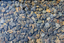 Texture Of Wet Pebbles. Smooth...