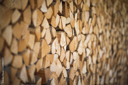 Wood stapled