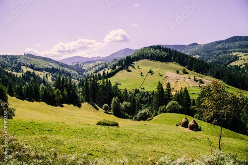 Foto auf Leinwand Flieder Mountain village landscape in the wild Ukrainian Bukovyna area