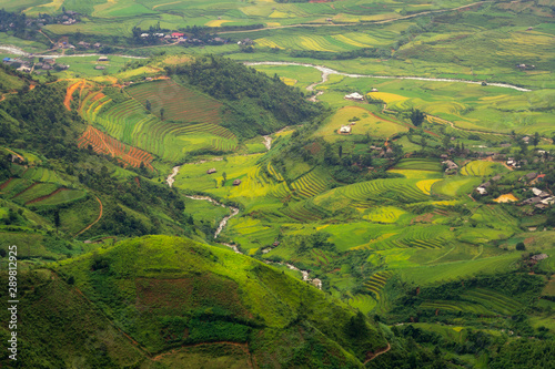 Foto auf Gartenposter Reisfelder Landscape terraced rice field near Sapa,Mu Cang Chai, North of Vietnam