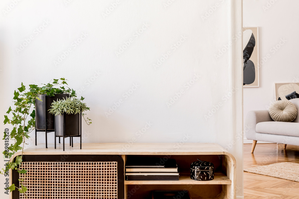 Fototapeta Modern scandinavian home interior with design wooden commode, plants in black pots, gray sofa, books and personal accessories. Stylish home decor. Template. Copy space. White walls.