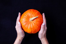 Woman Hands Holding A Small Orange Pumpkin On Black Background. Top View.