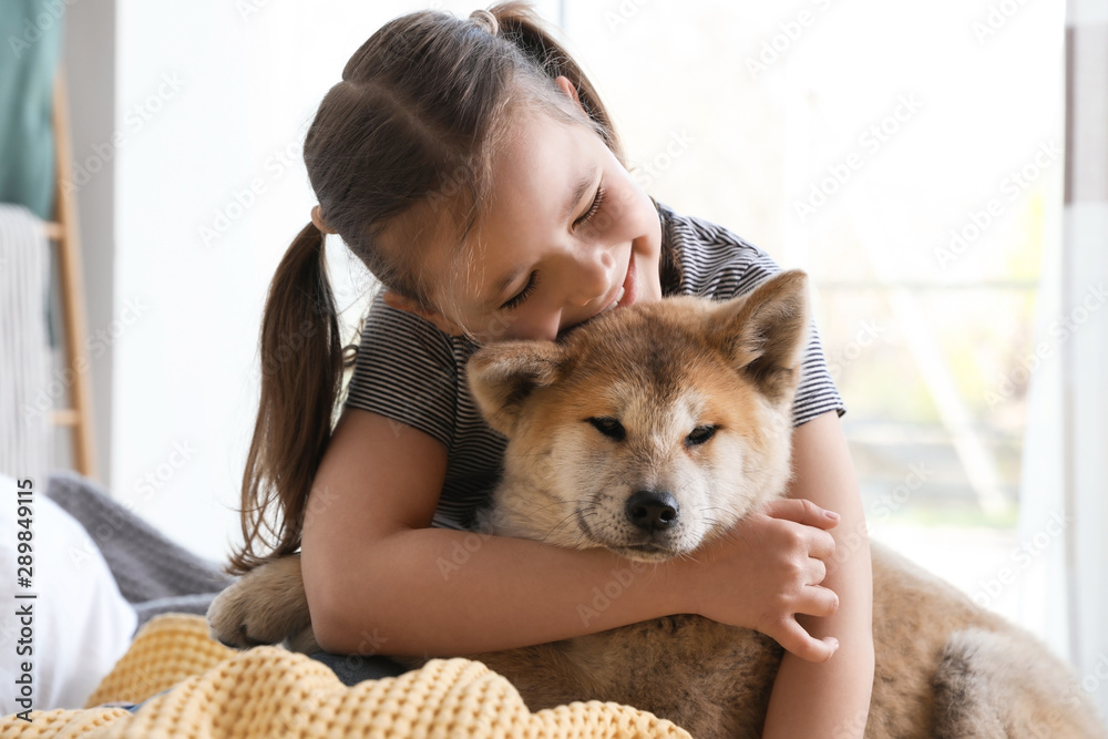 Fototapety, obrazy: Happy girl with Akita Inu dog on bed. Little friends