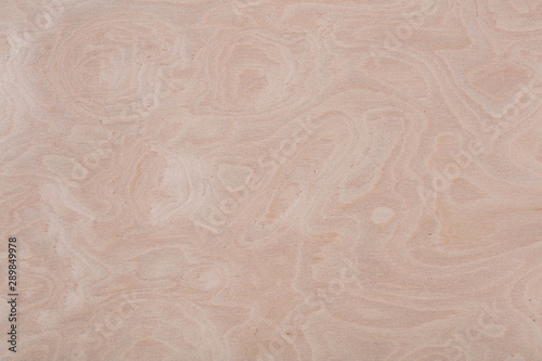 Natural light beige ash veneer background for your classic design. High quality texture in extremely high resolution. 50 megapixels photo.