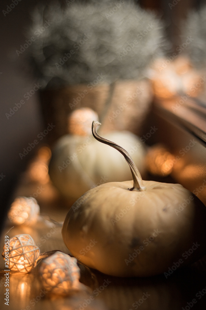 Fototapety, obrazy: autumn cosy pumpkin, candles and autumn plants on window with led lights bokeh