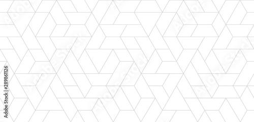 Seamless thin linear pattern Wallpaper Mural