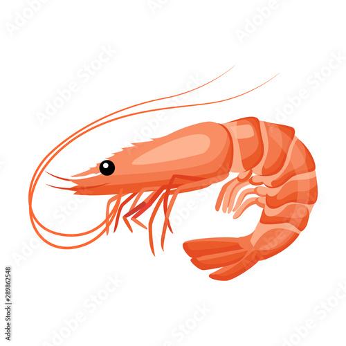 Cuadros en Lienzo  Shrimp icon in flat style, fresh sea food.