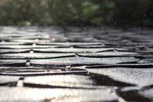Gleaming Shingle Roof During Rain In Sunlight. Selective Focus