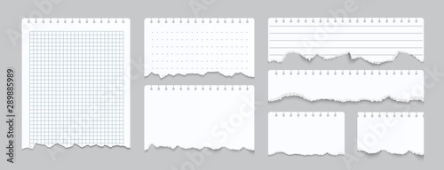 Obraz Torn notebook papers. Realistic blank gridded notebook ripped out papers. Vector illustration white paper sheets of square with cell horizontal line and perforation on gray background - fototapety do salonu