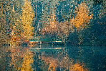 FototapetaPhoto of autumn trees and pond