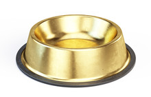 Gold Metall Pet Bowl Isolated ...