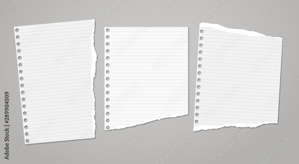 Fototapeta Set of torn white note, notebook paper pieces stuck on dark grey background. Vector illustration