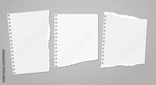 Set of torn white note, notebook paper pieces stuck on dark grey background Tablou Canvas