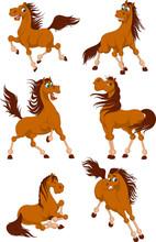 Set Of Cute Horses. Funny Hors...
