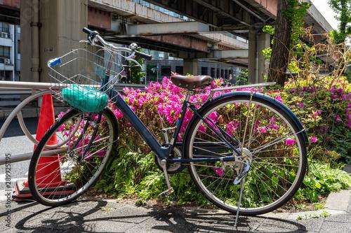 Türaufkleber Fahrrad blue bicycle and pink blooming flowers and tree near road under bridge