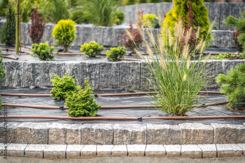 Fototapety, obrazy: Garden Watering Technology