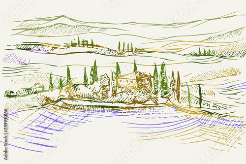Fototapeta Rysynek ręcznie rysowany. Toskański pejzaż z okolic Sieny we Włoszech w Europie obraz