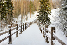 Beautiful Winter Landscape. Wo...