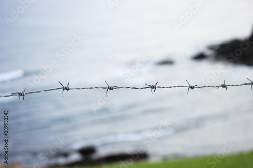 Valokuva  Barbed wire on a background of the sea