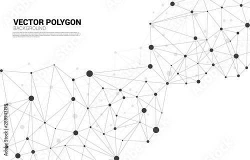 Fototapeta Network Connecting dot polygon background