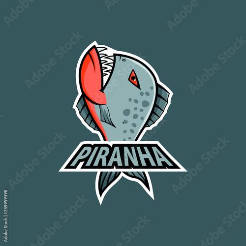 Fényképezés  piranha sports mascot logo. angry piranha fish mascot
