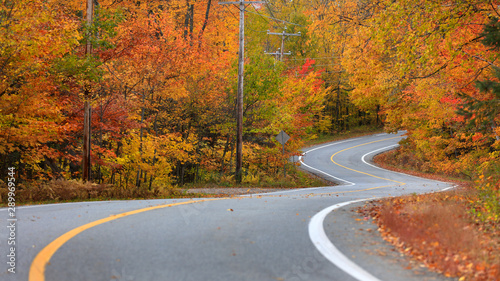 Wall Murals Pale violet Scenic road through Quebec countryside in autumn time